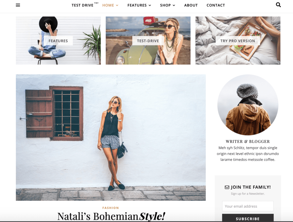 Ashe Pro Theme from WP Royal themes for bloggers